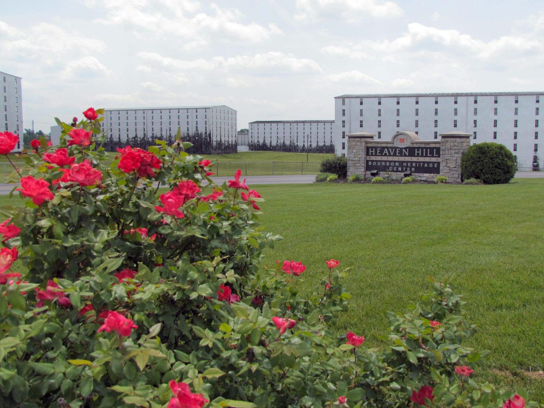 Flowers near Heaven Hill Distilleries