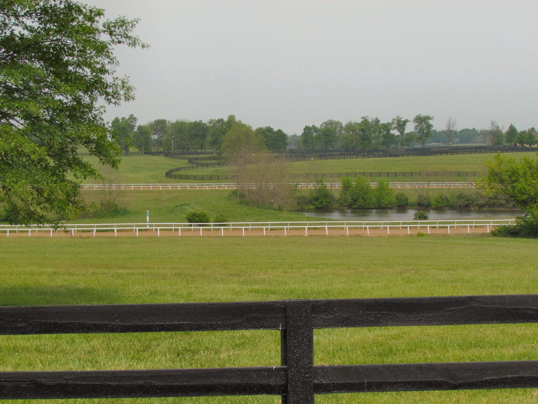 A field of grass in the Oak Stud Estates