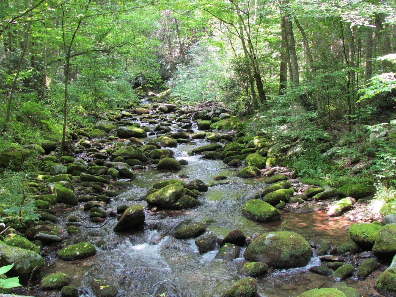 A stony river