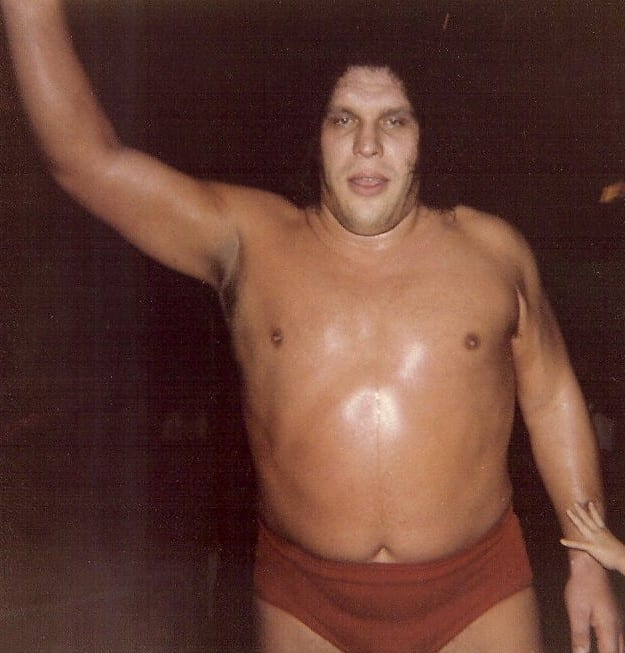 Andre The Giant acknowledging fans
