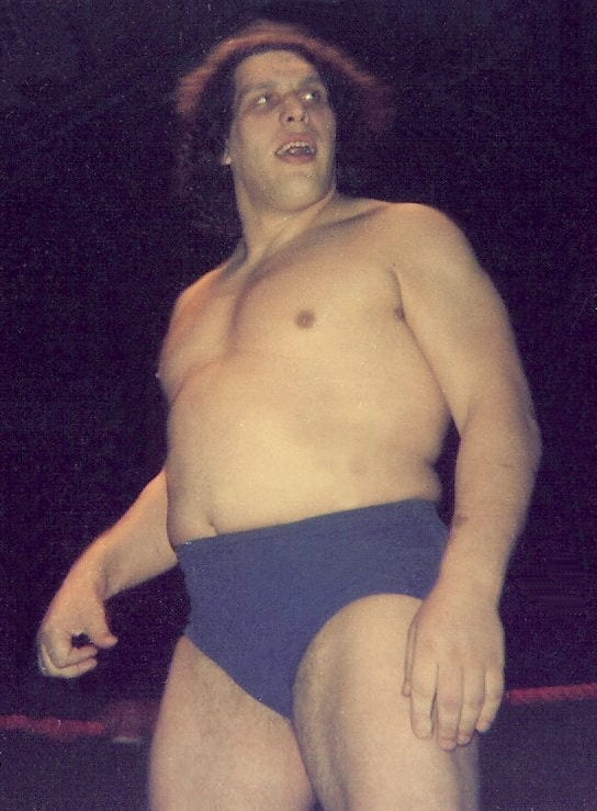 Andre The Giant after the match