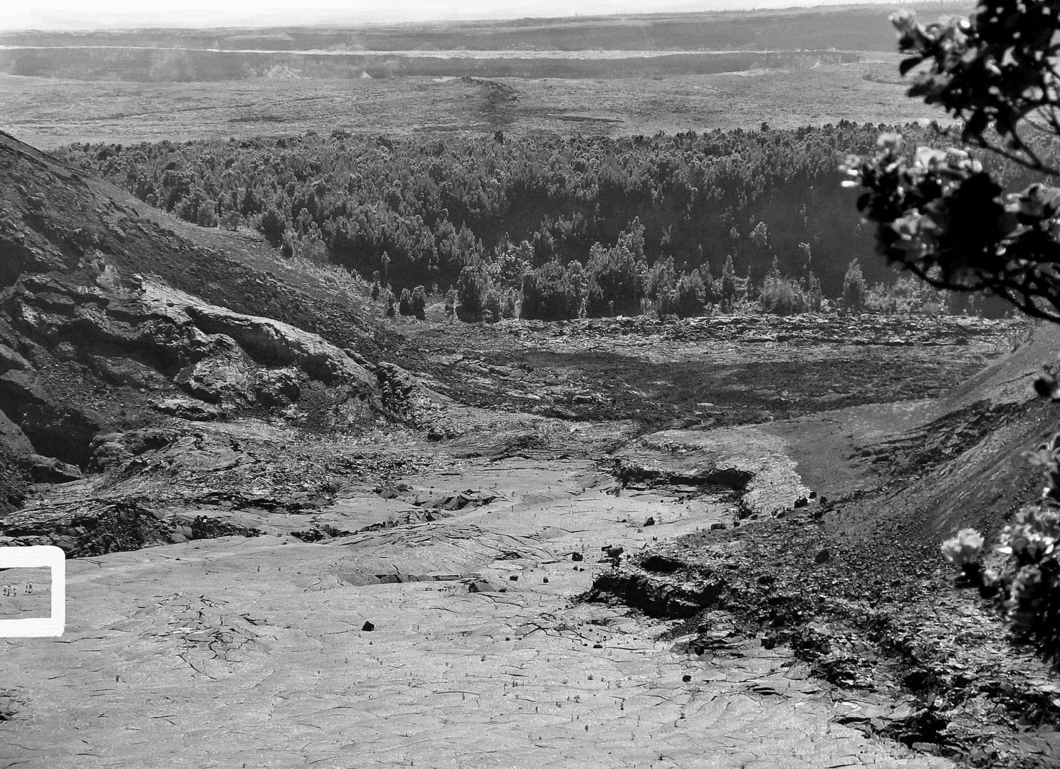 A black and white image of the Kilauea Iki Crater Overlook