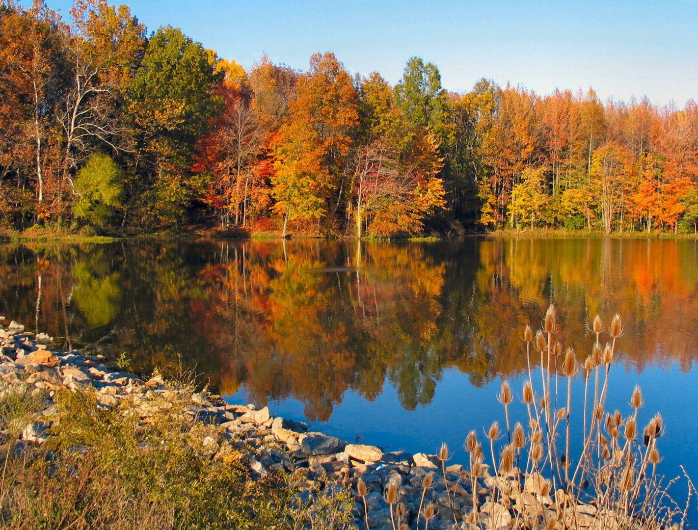 Stonelick Lake during autumn